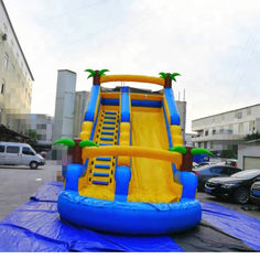 China PVC Tarpaulin Inflatable Amusement Park Double Lane Blow Up Slide For Sports Game supplier