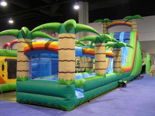 China Durable Odorless PVC Outdoor Inflatable Water Slide Park Kids Game Fire Resistance supplier