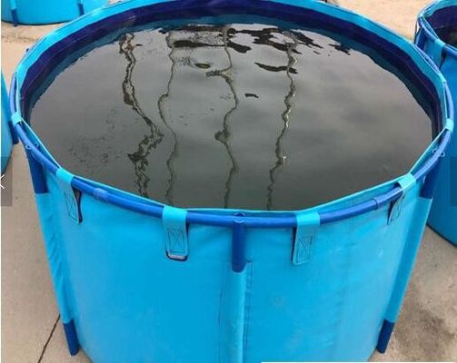 Fish Farming Aquarium Water Storage Tank, Blue Cylinder Above Ground Fish Pond
