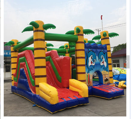 China Cartoon Print Inflatable Amusement Park Commercial Bouncy Jumping Castle factory