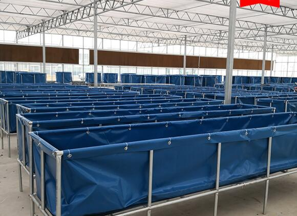 2000L Double Tier Tarpaulin Fish Tank  ,  Safe Water Tarpaulin Fish Pond